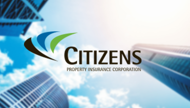 citizens-grid-case-study
