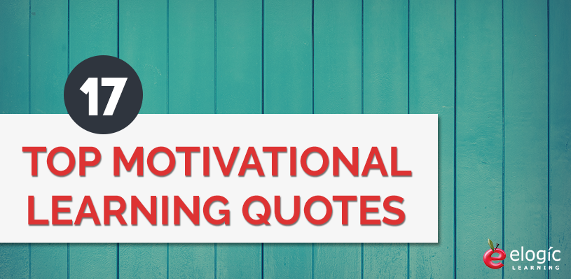 Quotes On Learning Cool 17 Top Motivational Learning Quotes