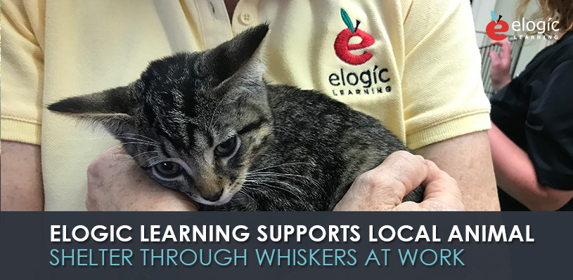 elogic-learning-supports-local-animal-shelter-through-the-whiskers-at-work-program